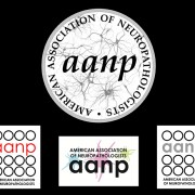 Logo Design for The American Association of Neuropathologists